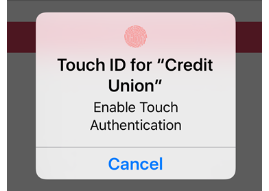 Touch the Touch ID